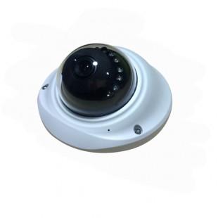 IP Видеокамера Ras Electronics RA‐503GIP1.3S